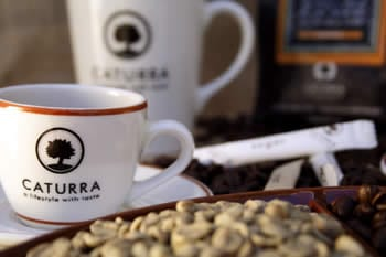 Caturra Coffee
