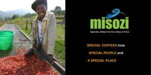 thumbnail of MISOZI company profile